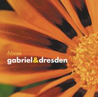gabrieldresden_bloom